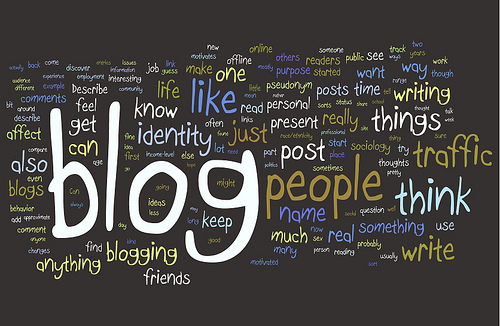 my social agency blog 5 Tips for Becoming a Pro Blogger