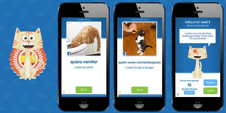 23-cat-academy-1 Saturday Social – Vine, Pinterest and CatAcademy