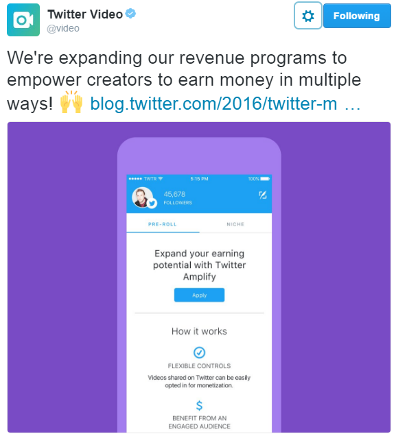 twitter-pre-roll-ads Your Digital Marketing Weekly Roundup