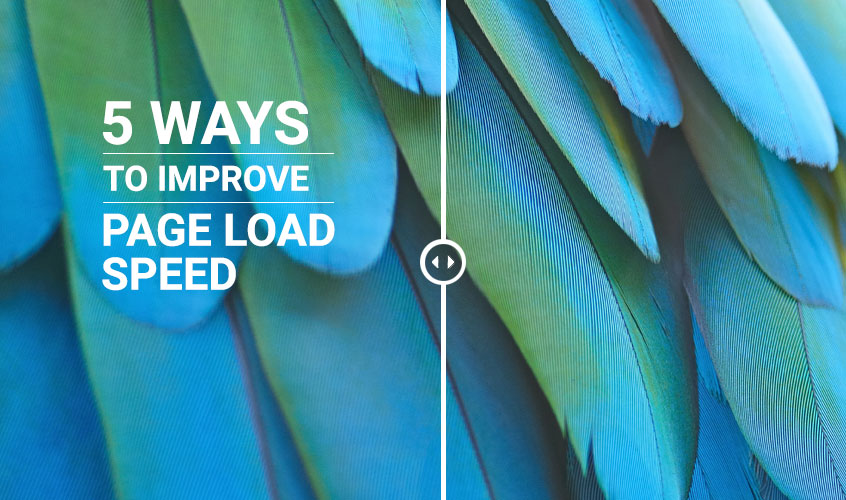 msa_-Improve-Page-Load-Speed 5 Ways to Improve Page Load Speed (and why you definitely should)!